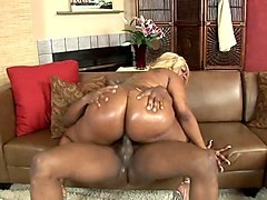 big ass ebony shemales